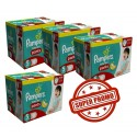 576 Couches Pampers Baby Dry Pants taille 5 sur Sos Couches