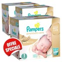 520 Couches Pampers Premium Care taille 1 sur Sos Couches
